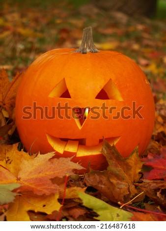 autumn and halloween - stock photo