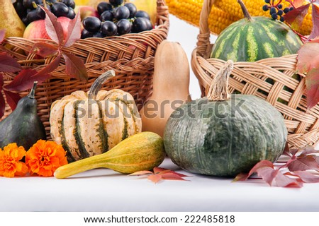 Autumn and Thanksgiving concept. Seasonal fruit and pumpkins in basket on isolated background. - stock photo