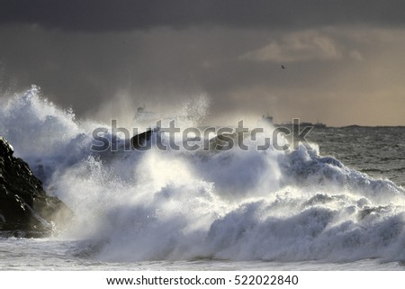 Autumn and winter sea storm at sunset light with spray and splash from big Atlantic waves breaking against cliff. Northern portuguese coast.