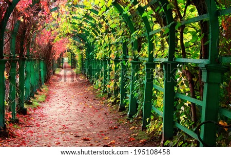 Autumn archway in a garden. - stock photo