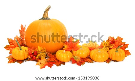 Autumn arrangement of pumpkins with red leaves over white - stock photo