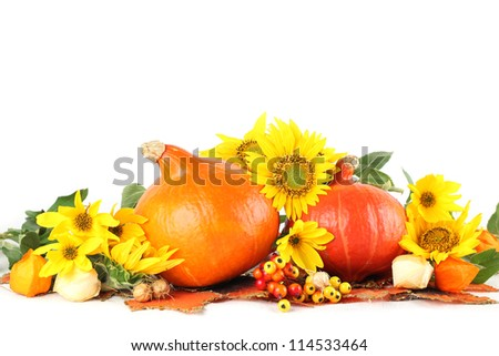 Autumn arrangement with Hokkaido pumpkins and sunflowers on white background - stock photo