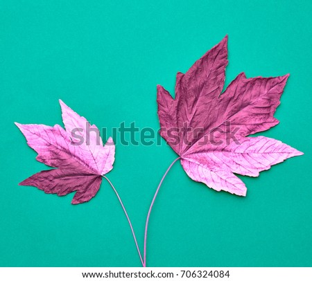 Autumn Arrives. Art Gallery. Minimal. Pink Fall Leaves Background. Pink Maple Leaves Couple. Fall Fashion Design. Vintage