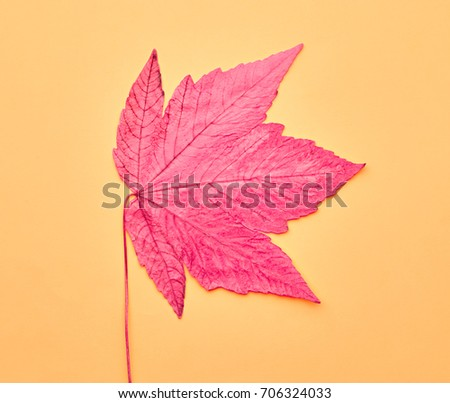 Autumn Arrives. Fall Leaves Background. Fall Fashion Design. Art Gallery. Minimal. Pink Maple Leaf on Yellow. Autumn Vintage Concept