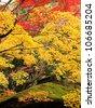 Autumn at Kotoin Sub-temple in Daitoku-ji Temple in Kyoto, Japan - stock photo