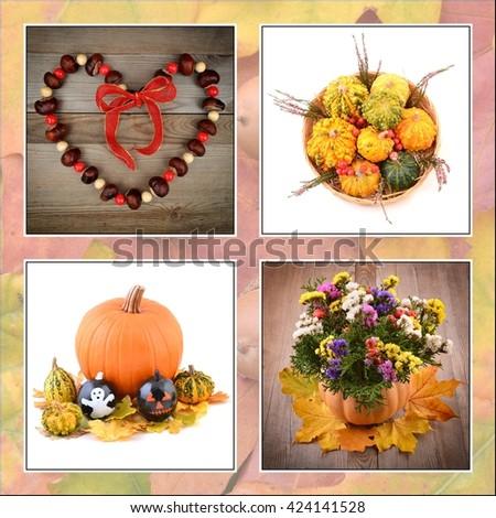 Autumn. Autumn fruits.  Collage of autumn. Autumn. Autumn fruits.  Autumn decoration. Autumn. Autumn fruits.  Autumn card. Autumn fruits color. - stock photo