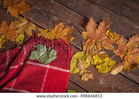 Autumn background. Autumn leaves and blanket on wooden background. Thanksgiving day concept. thermos and mugs. checkered plaid