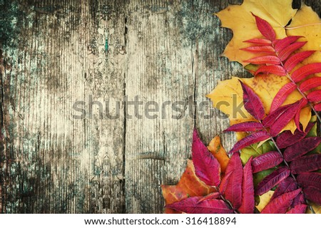 Autumn background/Autumn leaves over wooden background/Thanksgiving day concept - stock photo