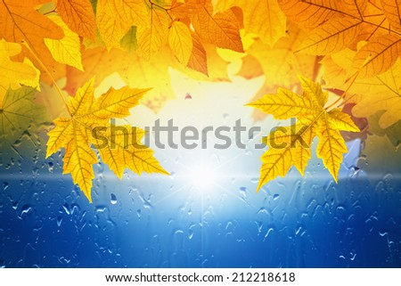 Autumn background - falling maple leaves, window with rain drops, rainy day, season is fall - stock photo