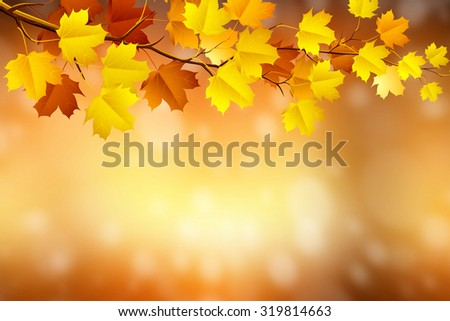 autumn background in blurry circle glowing bokeh  design