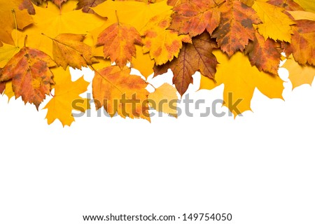 Autumn background of colored leafs border isolated/ With clipping path - stock photo