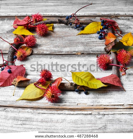 autumn background of leaves and dry branches
