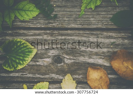 Autumn background on wooden desk. Vintage filtered photo. - stock photo