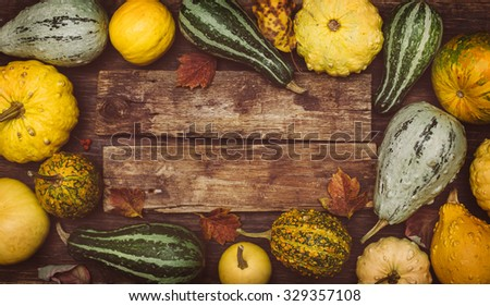 Autumn background. Pumpkins on a wooden board with copyspace. Thanksgiving day concept  - stock photo