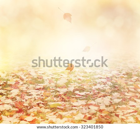 Autumn Background with Colorful Leaves - stock photo