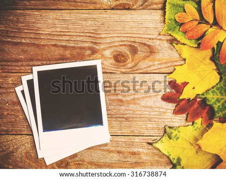 Autumn background with colorful leaves on rustic wooden board. Creating fall season memories with retro photo cards of photo frames. Thanksgiving and Halloween holidays concept. Copyspace  - stock photo