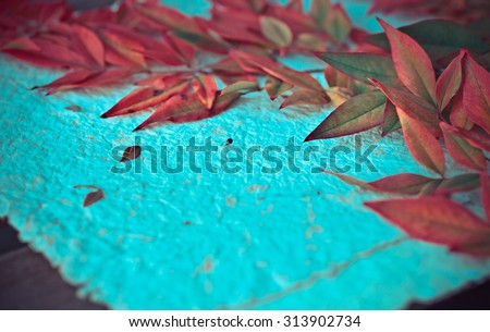 Autumn background with colorful yellow orange leaves of magnolia on wooden background. Fall theme, Autumn concept background with yellow fall leaves and copy space - stock photo