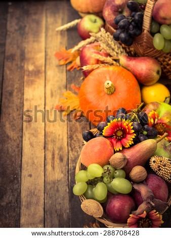 Autumn background with fresh fruits - stock photo