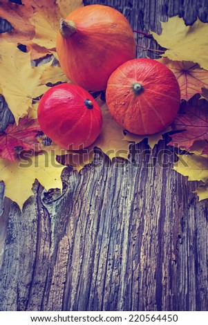 Autumn background with Pumpkins and autumn leaves/ thanksgiving background - stock photo