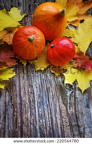Autumn background with Pumpkins and autumn leaves/ thanksgiving background