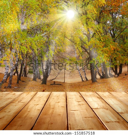 autumn background  with wooden planks  - stock photo
