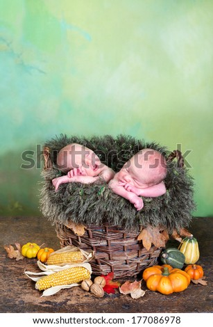 Autumn basket with halloween pumpkins and two adorable newborn twin babies