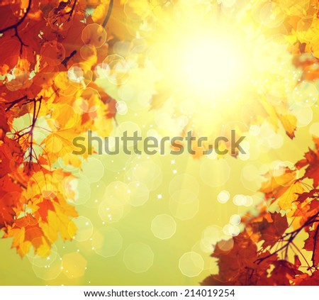 Autumn. Blurred Fall Abstract autumnal background with colorful leaves and sun.  - stock photo