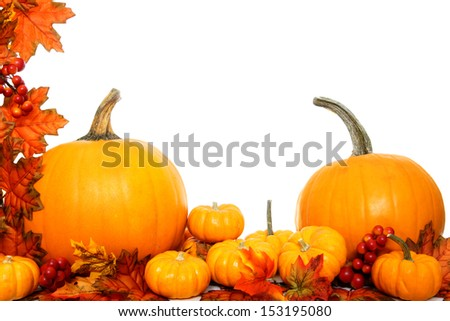 Autumn border of pumpkins with red leaves over white - stock photo