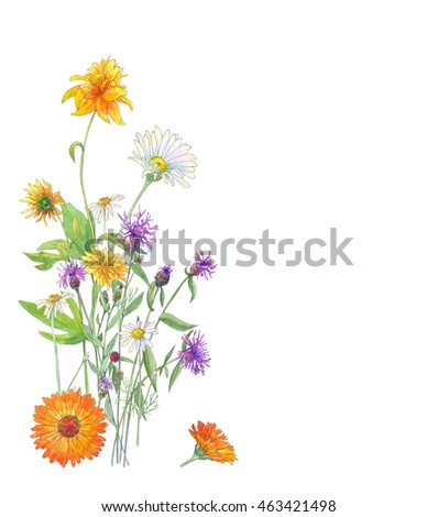 Autumn bouquet, orange, yellow and purple flowers, calendula, chamomile, cornflower, rudbeckia on white background, watercolor painting, vintage
