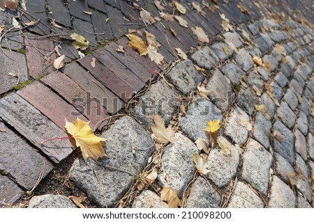 Autumn Brick Road with Yellow Leaves background - stock photo