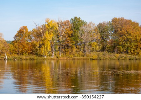 Autumn calm on the lake reflection of trees in water. Beautiful forest reflecting on calm lake shore. Beautiful calm lake in the fall reflecting trees