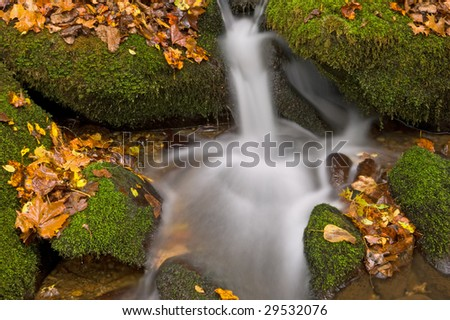 Autumn cascade framed by fallen leaves, Great Smoky Mountains National Park, Tennessee, USA