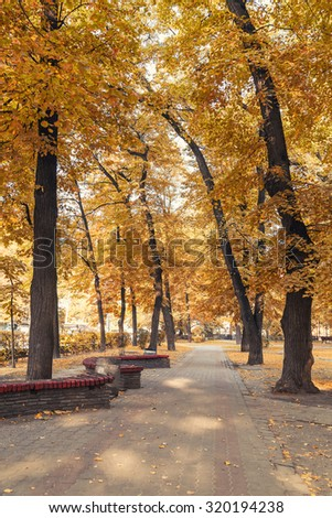 autumn city park in morning - stock photo