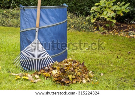 Autumn cleaning in small garden. Rake, blue bag  and leaves on green grass - stock photo