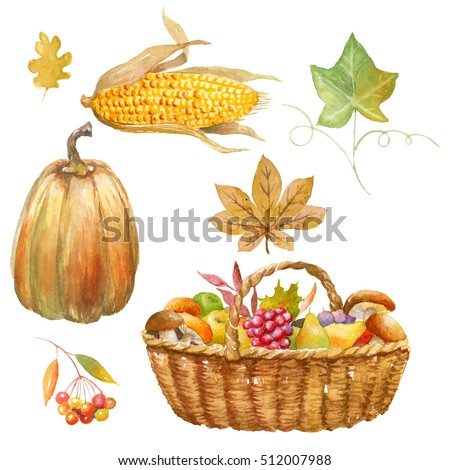 Autumn clip art hand watercolor painted, Thanksgiving objects, isolated, clipping path included, quick isolation. Pumpkin, apple, pear, mushroom, pomegranate.
