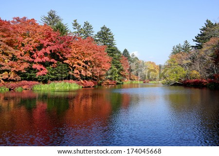 Autumn color of pond, Karuizawa, Nagano, Japan  - stock photo
