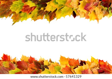 Autumn colored leaves border frame for your text isolated on white - stock photo