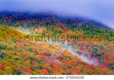 Autumn colored trees on Mt. Mansfield, Stowe, Vermont, USA. - stock photo