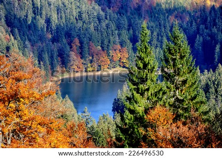 Autumn colorful foliage over lake with beautiful woods in red and yellow color - stock photo