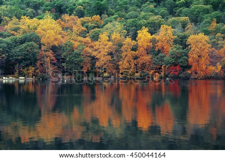 Autumn colorful foliage with lake reflection.