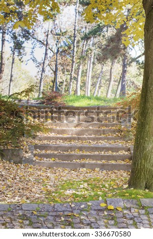 Autumn colors and fallen leaves on staircase in the park