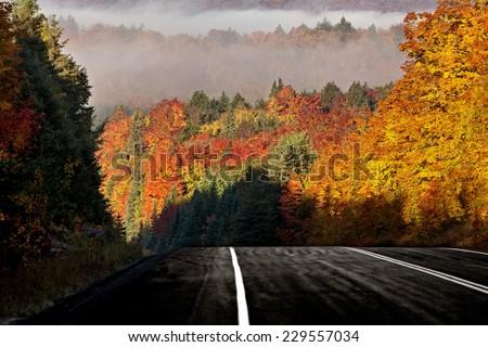 Autumn Colors and road in Algonquin Park Ontario Canada - stock photo