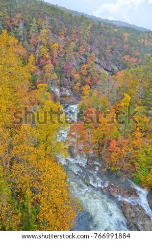 Autumn Colors at a River Gorge