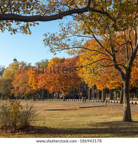 Autumn colors at the Charles River bank on Harvard University campus in Cambridge, MA, USA in Fall 2013. - stock photo