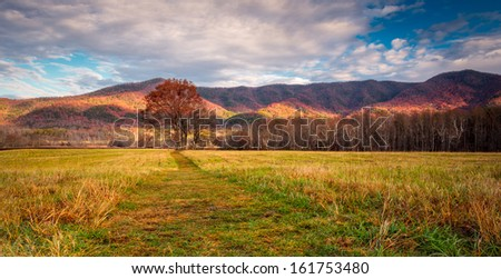 Autumn colors in cades cove smoky mountains national park, couds with colorful distant mountains and  a path to tree in the meadow - stock photo