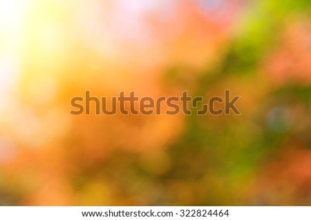 Autumn colors in deep blurred sunny background. - stock photo
