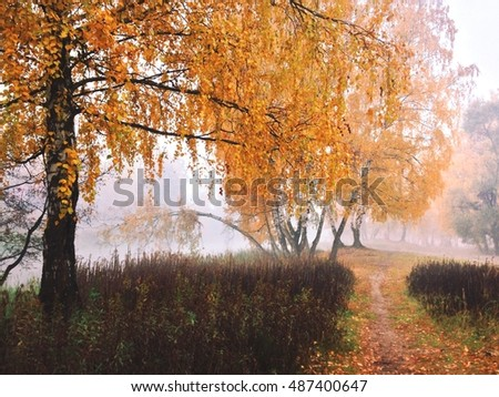 Autumn colors in the Moscow region. Trees, parks, leaves and nature.