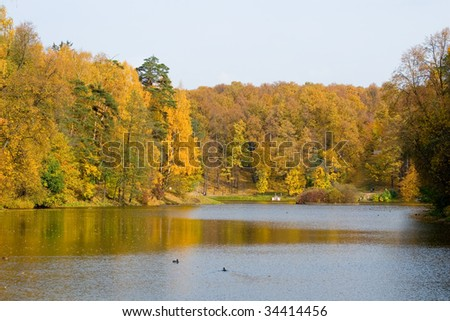autumn colors in the park, landscape