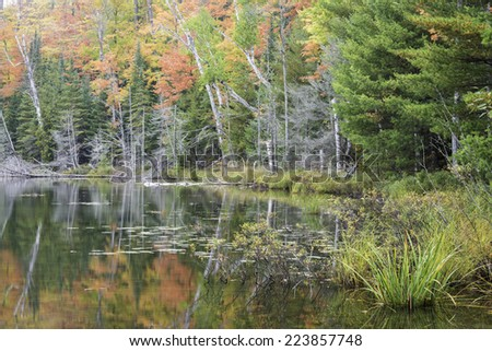 Autumn colors of birch and maple trees reflect in the calm surface of Red Jack Lake in Hiawatha National Forest, Michigan. - stock photo