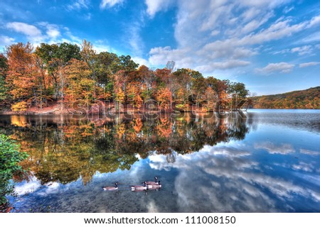 Autumn colors reflect in the water with a blue sky as canadian geese swim in Loch Raven Maryland - stock photo
